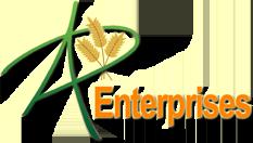 Ad Enterprises Logo